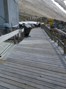 Trails/Boardwalks