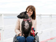 Woman-using-wheelchair-with-her-dog-on-the-coast-at-Eastern-Beach-Geelong
