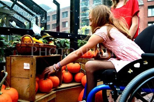 Young girl in a wheelchair shopping for pumpkins with her family