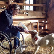 Young-woman-using-wheelchair-bottle-feeding-baby-goat