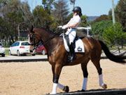 Boneo-Park,-Melbourne,-Australia.-18-October,-2017.-Equestrian-Australia-Para-Equestrian-Grade-3-Individual-Competition.-Wasabi-Sun-ridden-by-Emma-Booth